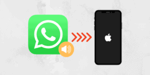 how to save whatsapp audio
