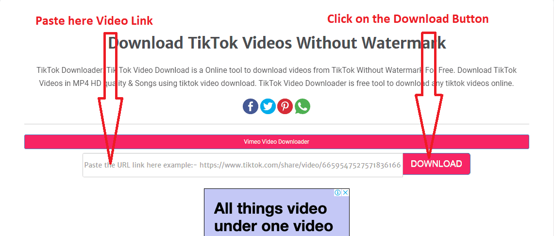Download TikTok Videos with TikTok video downloader