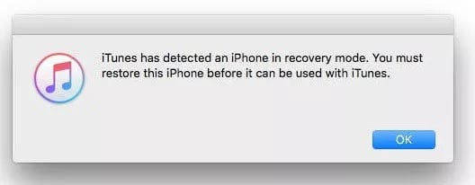 Use the recovery mode to Fix iPhone Stuck on Loading Screen
